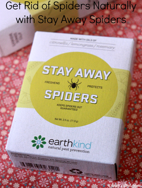 stay-away-spiders
