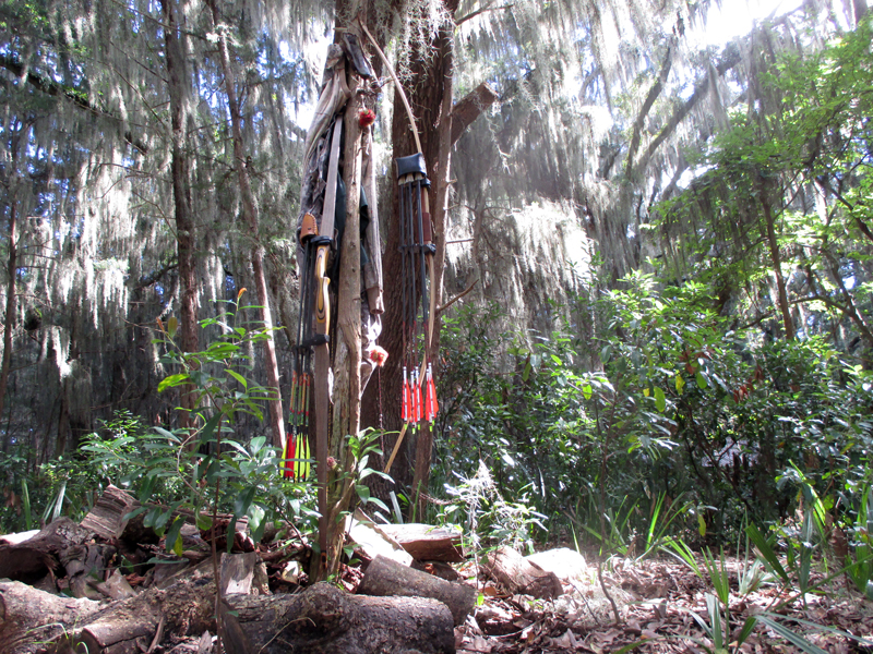 Our longbows hanging from a tree on Cumberland Island.