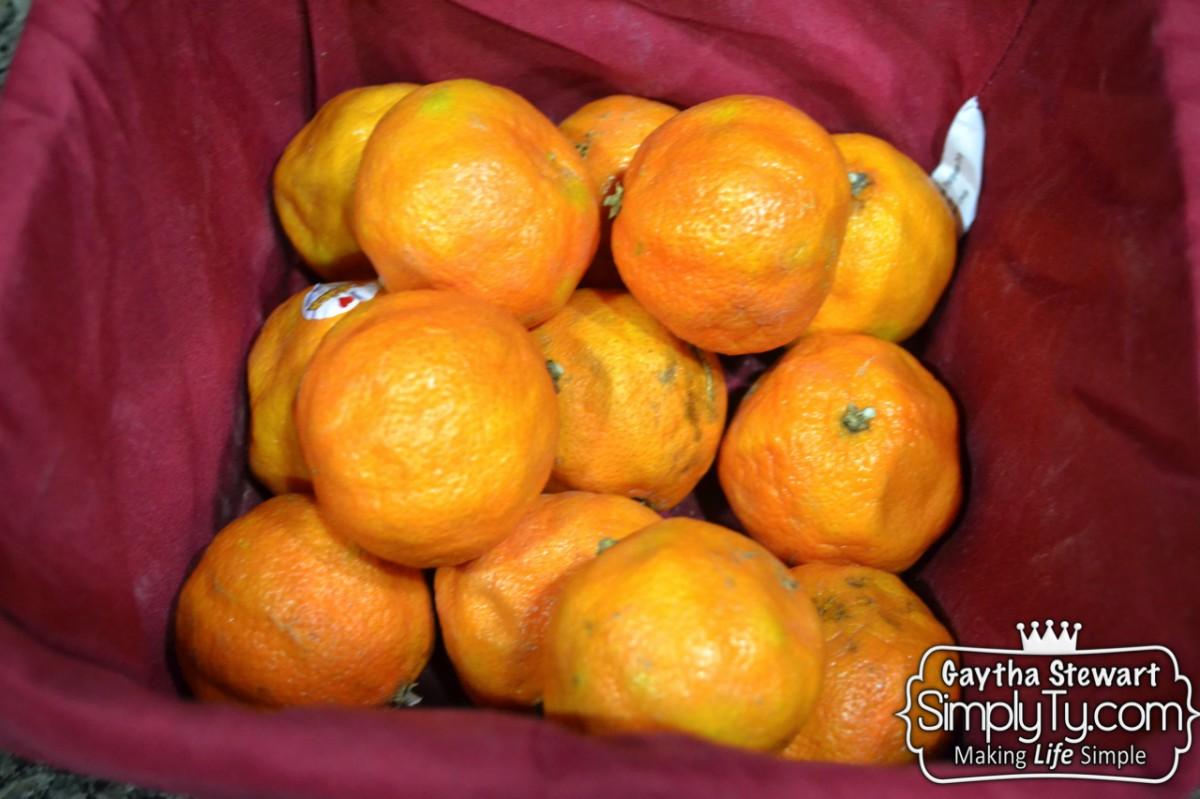 OrangeGarbageDispCleaner1