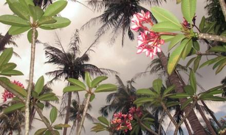 Koh Phangan – Malerische Strände und Buchten