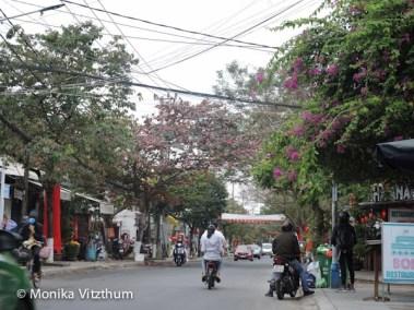 Vietnam_2020_Hoi_An-6444