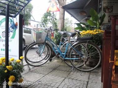 Vietnam_2020_Hoi_An-6449