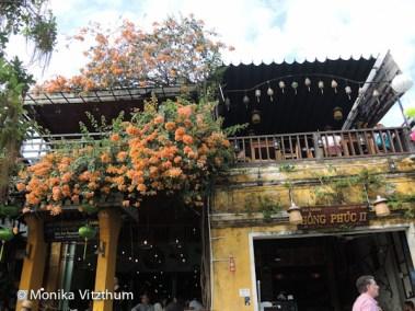Vietnam_2020_Hoi_An-6566