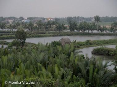 Vietnam_2020_Hoi_An-6701