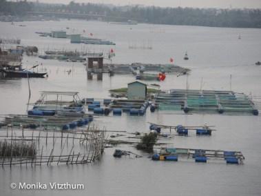 Vietnam_2020_Hoi_An-6709