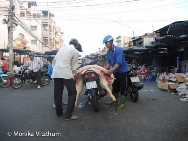 Vietnam_2020_Mekongdelta_2020-6014