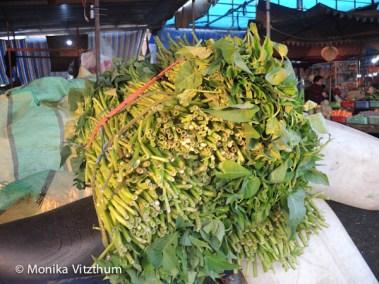 Vietnam_2020_Mekongdelta_2020-6019