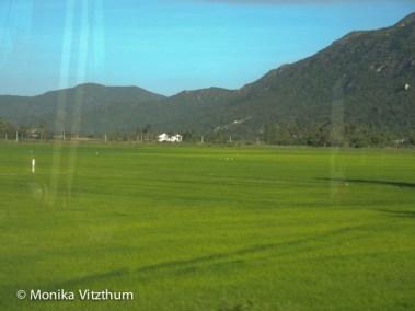 Vietnam_2020_Nha_Trang_Teth-6188