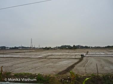 Vietnam_2020_Halong_Bay-7975