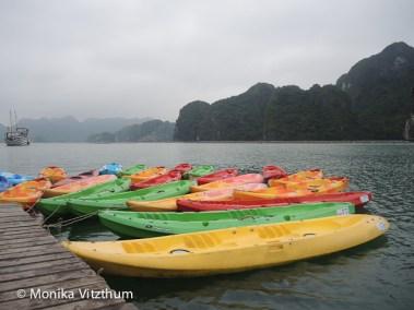 Vietnam_2020_Halong_Bay-8335