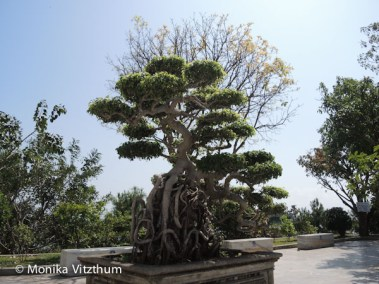 Vietnam_2020_Lady_Buddha-7121