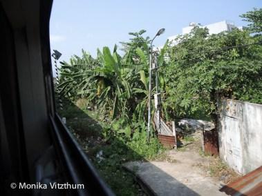 Vietnam_2020_Wolkenpass_Hue_Kaiserpalast-7312