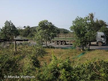 Vietnam_2020_Wolkenpass_Hue_Kaiserpalast-7416