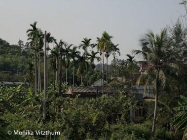 Vietnam_2020_Wolkenpass_Hue_Kaiserpalast-7459
