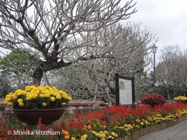 Vietnam_2020_Wolkenpass_Hue_Kaiserpalast-7568