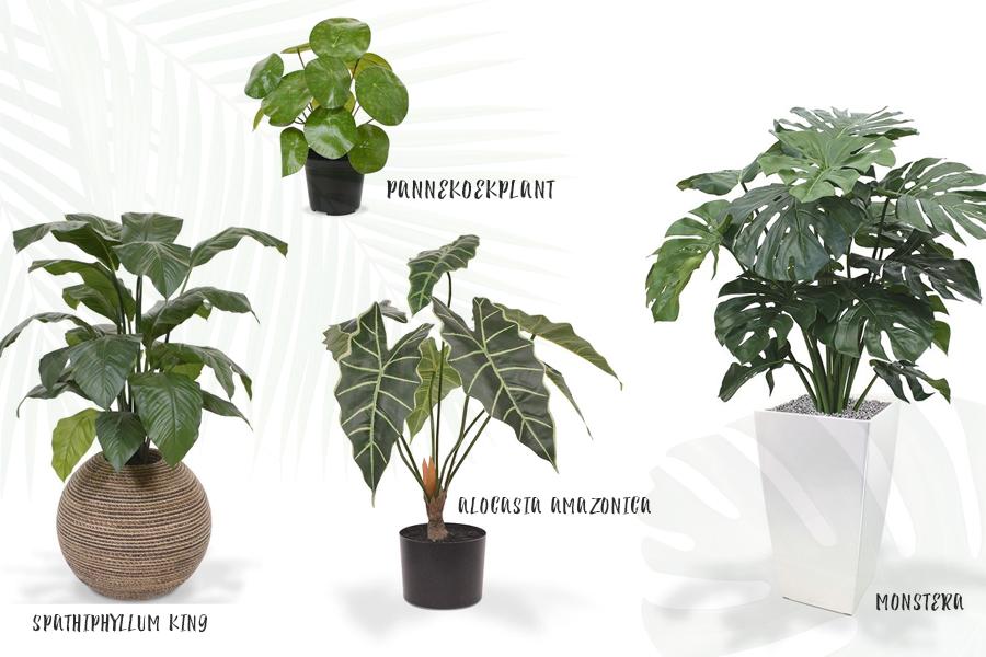 Kunstplanten voor binnen