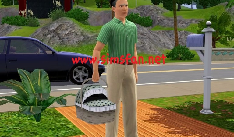 The Sims 3 Evlat Edinme