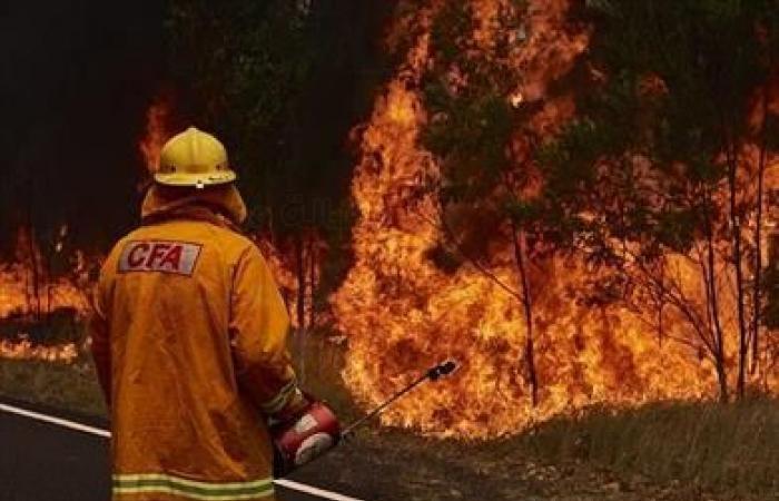 الحرائق المستعرة في غابات كاليفورنيا تجبر الآلاف على النزوح من مناطقهم