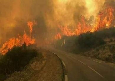 تواصل اندلاع الحرائق شرقي روسيا.. وخسائر بالملايين