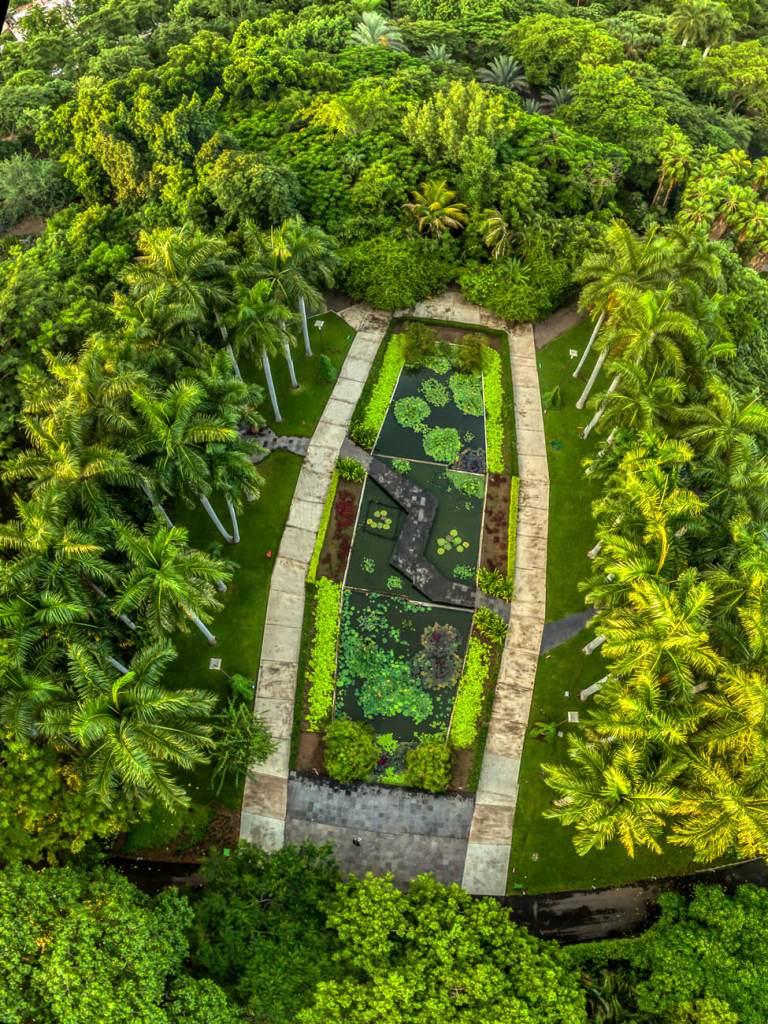 vista aerea del jardin botanico culiacan
