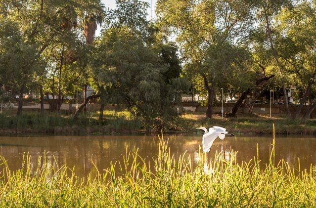 Parque Las Riberas