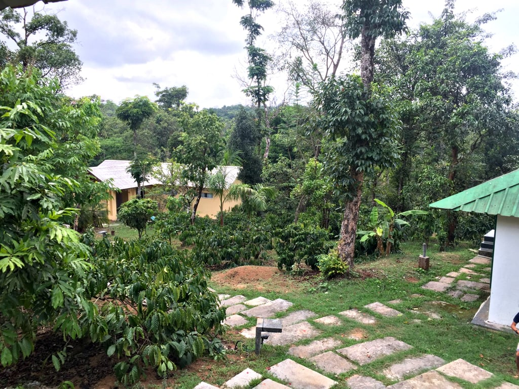 hills resort sakleshpur