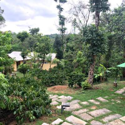 The Hills Resort, Sakleshpur – Stay Simple
