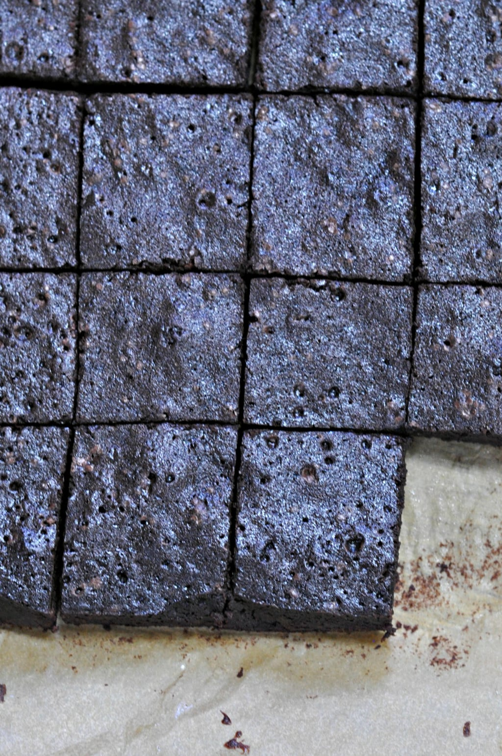 Cocoa, Cranberry & Whiskey Brownies