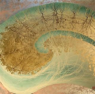 İnsan Sinir Sistemi-3