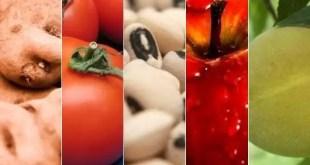 Alimentos que tenés en la heladera y pueden envenenarte