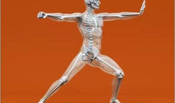 Las partes del cuerpo que no usamos