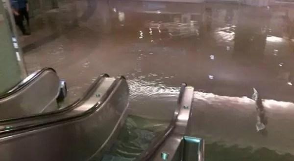 ¿Un shopping inundado con tiburones acechando?