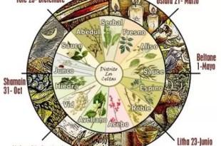 Descubri qué dice el horóscopo celta de vos