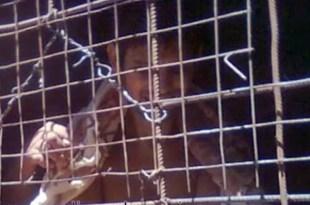 Liberan a joven que vivió encadenado como perro durante años