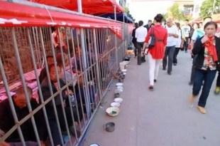 China enjaula a indigentes para que no molesten a turistas