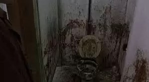 A la cárcel por llenar de diarrea el baño de Tribunales