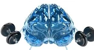 Por qué el cerebro se despeja después de hacer ejercicio