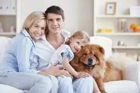 El costo real de mantener a un perro