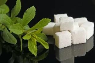 Toda la verdad sobre la stevia