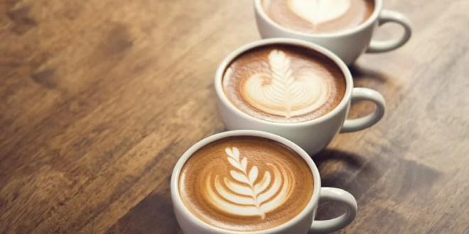 ¿Cuáles son las mejores cafeteras?