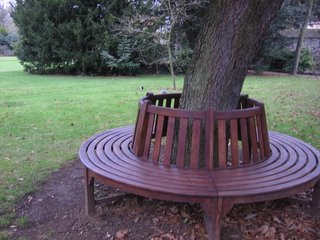 Bench in Trinity College