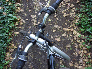 Handlebars on a wooden path