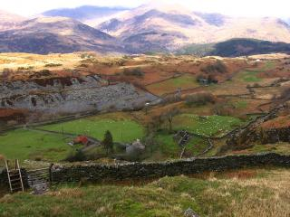 Welsh landscape with sheep