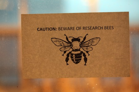 """""""CAUTION: BEWARE OF RESEARCH BEES"""""""