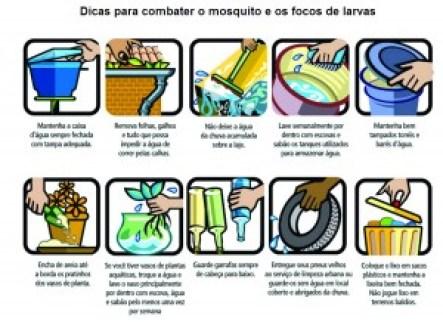 dengue-combate