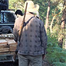 Destartalada escopeta calibre 12 con que se acompan?a un viejo gomero de Guerrero