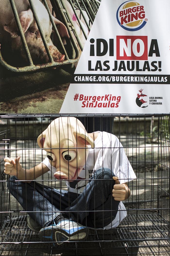 Protesta Burger King. Foto: Fórum Nacional de Proteção e Defesa Animal FNPDA