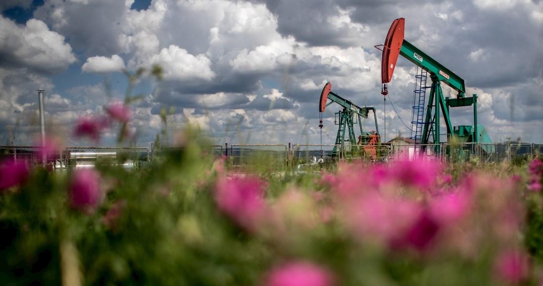 bombas-petrolera-campo-flores