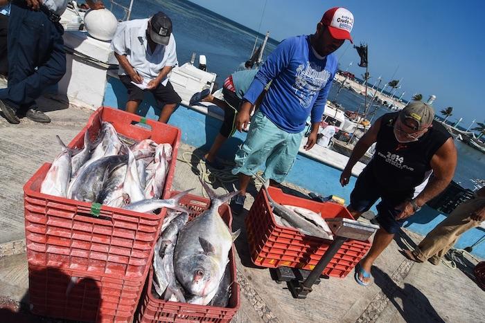 pescadores Campeche