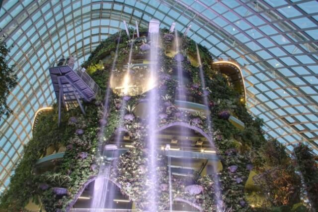 .Get Lost at Gardens By The Bay